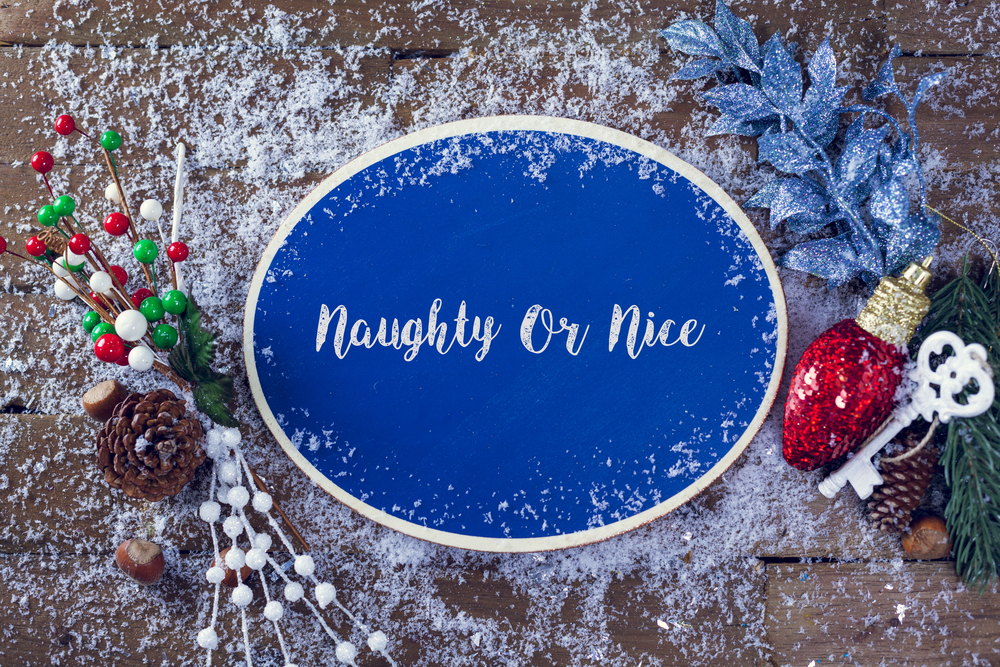 Naughty or nice sign with seasonal decorations (light bulb, pine cones, snow) surrounding it