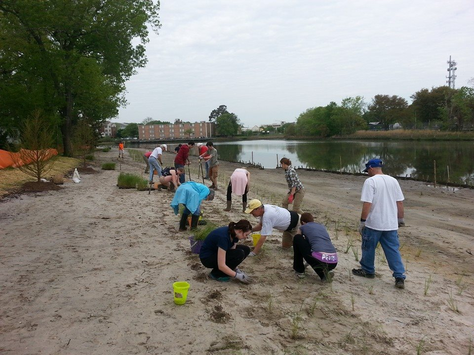 Picture of a Group of People Performing a Waterfront Cleanup