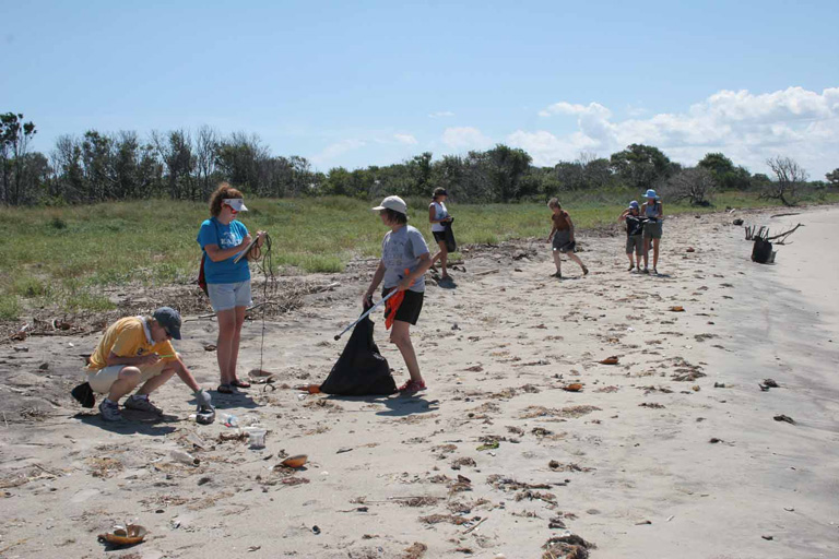 Picture of a Group of People Performing a Beach Cleanup