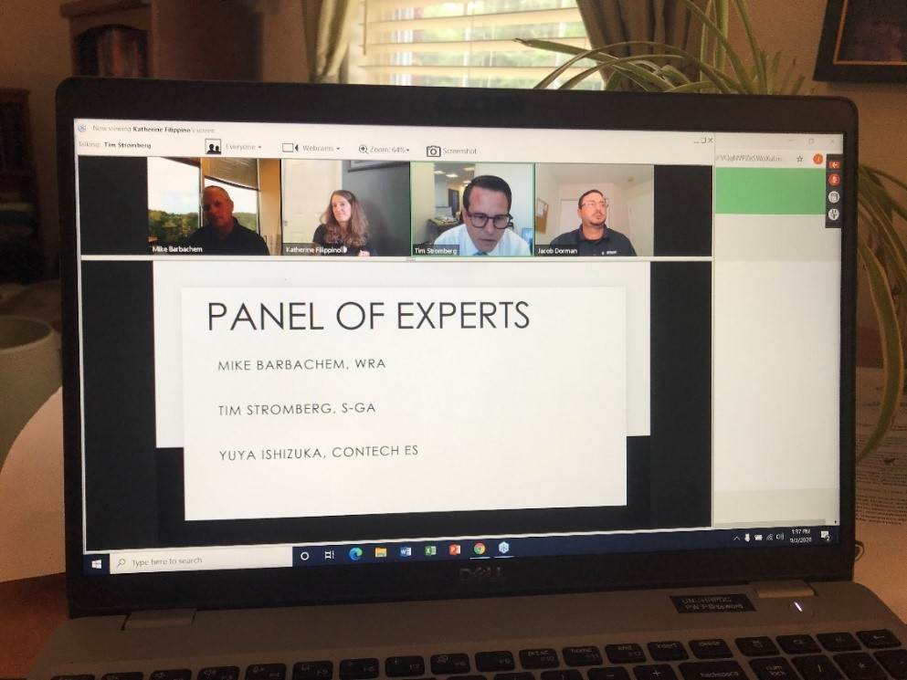 Screen Capture from Workshop Listing of Panel of Experts