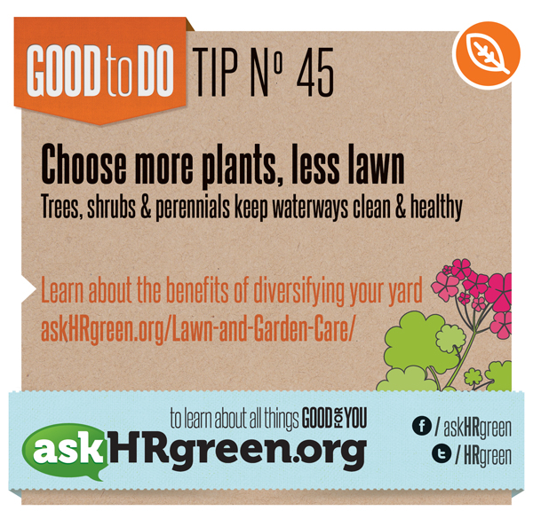 Plant More Plants Tip No. 45